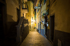 Riomaggiore alleyway at night Royalty Free Stock Images