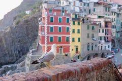 Riomaggiore village in Italy Stock Image