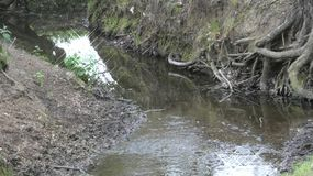 Rios e córregos Água silenciosa é sempre perigosa 13 imagens de stock royalty free