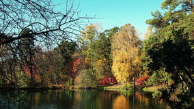 A Riot Of Colors. Autumn Riot of Colors at Lake in the Woods stock video footage