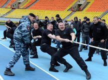 Riot policemen compete in tug of war. MOSCOW, RUSSIA - OCTOBER 19, 2013:Riot policemen compete in tug of war Royalty Free Stock Images