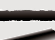 Rip dell'arricciatura illustrazione vettoriale