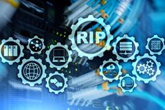 RIP Routing Information Protocol. Technology networks cocept. RIP Routing Information Protocol. Technology networks cocept royalty free stock images