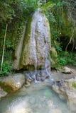 Ripaljka van de waterval stock afbeelding