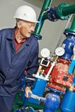 Riparatore dell'ingegnere del riscaldamento nel locale caldaie Immagine Stock Libera da Diritti
