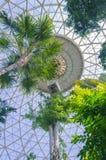 Riparazione delle cupole Fotografia Stock