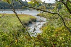 Riparian пейзаж вокруг Ярмут стоковое изображение