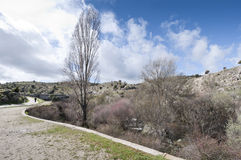 Riparian forest. Along the river Manzanares, Colmenar Viejo, Madrid, Spain. This river has had a great historical importance due to its close relation to the Stock Images