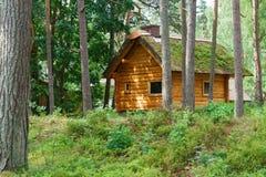 Riparo di legno di cabine del ceppo sotto il tetto ricoperto di paglia in abetaia Immagini Stock