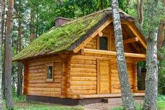 Riparo di legno di cabine del ceppo sotto il tetto ricoperto di paglia in abetaia Fotografia Stock