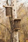 Riparo per gli uccelli nell'aviario che appende su un albero nel parco di autunno Fotografie Stock Libere da Diritti