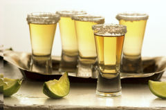 Ripasso Tequila Shots. Group of Ripasso tequila shots with limes and salt royalty free stock photo