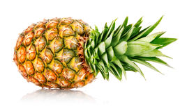 Ripe ananas fruit with green leaves. Isolated on white background Stock Images