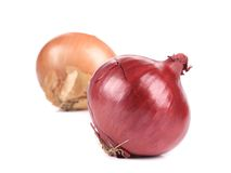 Ripe And Red Onions. Royalty Free Stock Photo