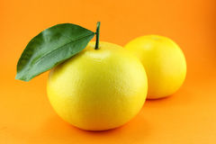 Grapefruit Royalty Free Stock Photo