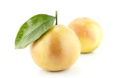 Ripe appetizing grapefruit Stock Images