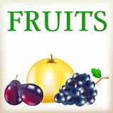 Ripe apple, black grapes, blue plums Royalty Free Stock Images