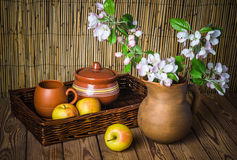 Ripe apple and blossoming branch of an apple-tree in a clay jar Stock Photos