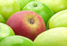 Ripe apple fruit Stock Photos