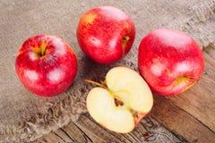 Ripe apple fruits Stock Image
