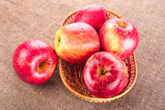 Ripe apple fruits Royalty Free Stock Photo