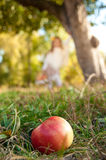 Ripe apple on the grass. Girl in distance Stock Photos