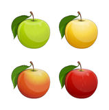 Ripe apple with green leaf Stock Photos