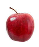 Ripe apple. Royalty Free Stock Photography