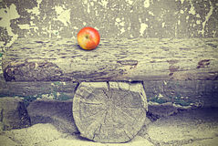 Ripe apple on old wooden bench, retro toned. Stock Image