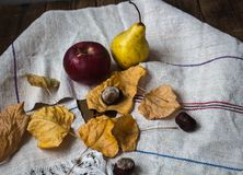 Ripe apple and pear and yellow leaves and chestnut. On wooden background stock photography