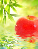 Ripe apple reflected in water royalty free stock photography