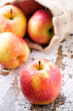 Ripe apple Royalty Free Stock Photos