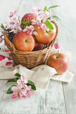Ripe apples in a basket Royalty Free Stock Image