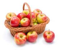 Ripe apples in basket. Full basket of fresh ripe red apples crop Stock Photo