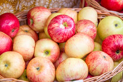 Ripe apples in the basket Royalty Free Stock Photography