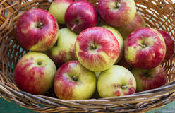 Ripe apples in the basket Stock Photo