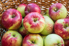 Ripe apples in the basket Stock Photos