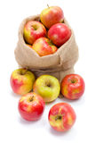 Ripe apples in burlap sack Royalty Free Stock Photography