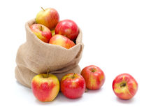 Ripe apples in burlap sack Stock Photo