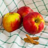 Ripe apples and cinnamon sticks Royalty Free Stock Photography