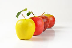 Ripe apples Stock Image