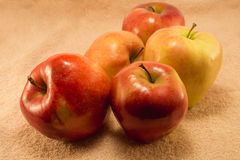 Ripe apples Stock Photo