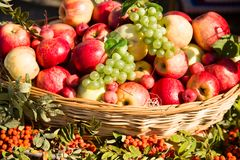 Ripe apples with grapes in a basket Stock Photos