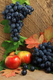 Ripe apples, leaves and bunch of grapes. Still life with ripe apples, autumn leaves and bunch of grapes Royalty Free Stock Photo