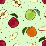 Ripe apples, slices and seeds. Royalty Free Stock Images