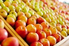 Ripe apples Royalty Free Stock Photo