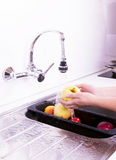 The ripe apples are washed in the kitchen. Stock Images