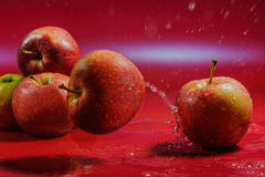 Ripe apples Royalty Free Stock Image