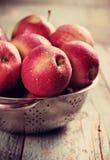 Ripe apples Stock Photography