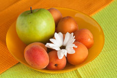 Ripe apricot and flower Royalty Free Stock Image